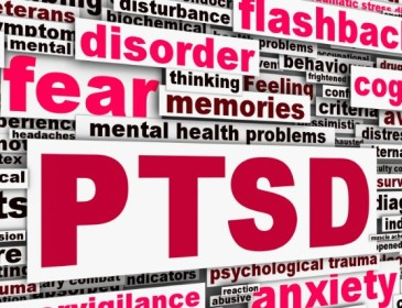 Your Brain and Post Traumatic Stress Disorder Part 2