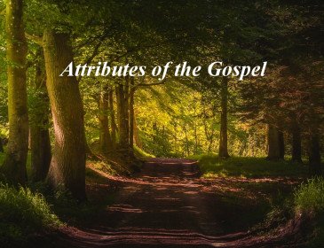 How Much Christ is in your Christianity?  Part 3